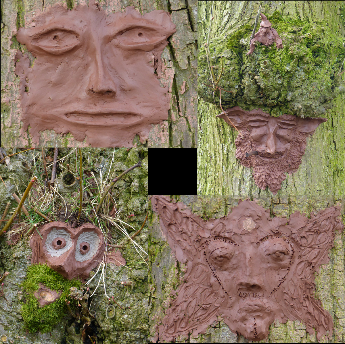 clay masks on tree barks